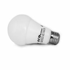 12 X Ampoule DEL Ecofitt - A19 - 9W